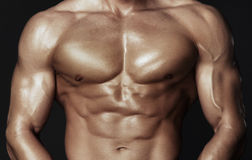 Body of muscular man. Horizontal studio shot Stock Images