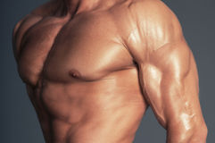 Body of muscular man Stock Images