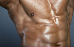 Body of muscular man Stock Photography