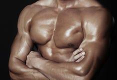 Body of muscular man. Horizontal studio shot royalty free stock image