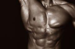 Body of muscular man. Horizontal studio shot royalty free stock photos