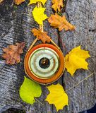 Body of old barometer on trunk of maple tree stock photos