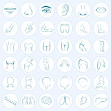 Body Parts, Five Senses Royalty Free Stock Images