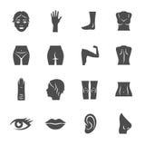 Body parts. Human body parts icon set vector illustration
