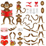 Body parts of monkeys in  EPS 10 Stock Image