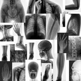 Body parts Royalty Free Stock Photos