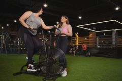 Beautiful plus size sportswomen exercising at the gym together. Body positive, femininity concept. Overweight happy women talking to her friend while cycling on stock images