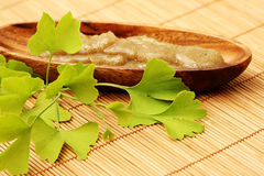 Body scrub. Bowl of body scrub with ginko leaves - beauty treatment Stock Image