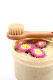 Body scrub and brush. Stock Images