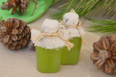 Body scrub with pine tree essential oil. Stock Photography