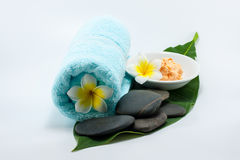 Body scrub spa set Royalty Free Stock Images