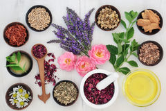Body and Skin Care Ingredients Royalty Free Stock Photos