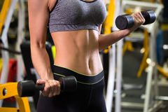 Body of slim female in activewear doing exercise with dumbbells Stock Images