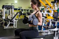 Body of slim female in activewear doing exercise with dumbbells Stock Photos