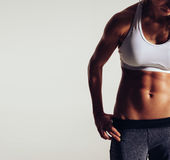 Body of slim female in sportswear Royalty Free Stock Photography