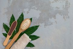 Body spa treatment bamboo brushes with bath towel on green tropical leaf background royalty free stock image