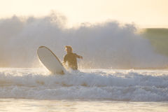 Body surfer riding a perfect wave. Stock Images