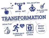 Body transformation concept Royalty Free Stock Photos