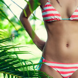 Body in the tropics Stock Photos
