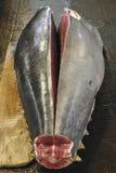 Body of tuna royalty free stock photography