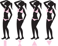 Body Types 1. Vector Illustration of four basic female body types with pink bikini swimsuits illustrated on silhouettes with body shapes below royalty free illustration