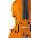 Body of violin with copy space Royalty Free Stock Photography