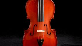 Body of violin or viola music instrument turning at black background stock video