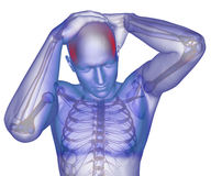 Body with visible headache. Human Skeleton, Body with visible headache stock illustration