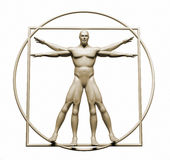 Body  in vitruvian. This is a 3d render illustration Stock Images