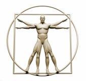 Body  in vitruvian Stock Images