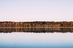 Body of Water Beside Brown Trees during Dusk Royalty Free Stock Photography