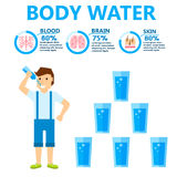 Body water drink infographics health people diet lifestyle concept brochure infochart vector illustration Stock Images