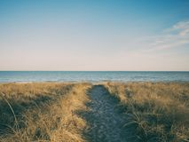 Body of Water Near Brow Grass Field Under Blue Sky Royalty Free Stock Image