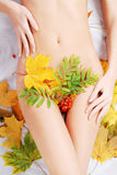 Body of a woman. Maple leaf and ashberry around of young woman body Stock Images