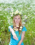 Body of the woman in a blue t-shirt with flowers in hands in the field of camomiles Stock Photo