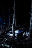 Body in woods at night. Human body with pants down lying in woods at night stock images