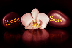 Body word and soul and white orchid Royalty Free Stock Images