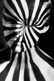 Bodyart espiral no corpo de uma moça Fotografia de Stock