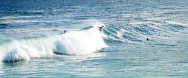 Bodyboarder die oceaangolf surfen stock foto's