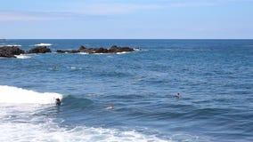 Bodyboarder/surfista e praia - oceano, ondas, surfando vídeos de arquivo