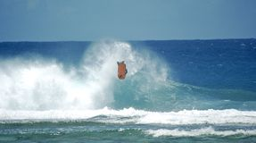 Bodyboarding Backflip. Bodyboarder performing a backflip on wave somewhere in the pacific ocean Stock Images