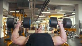 Bodybuilden in der Turnhalle - junger muskulöser Mann führt Training für Bizeps mit Dummköpfen durch stock video