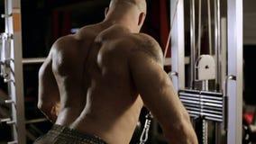 Bodybuilder ćwiczy triceps przy gym zdjęcie wideo