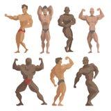 Bodybuilder αθλητικών τύπων διανυσματικός χαρακτήρων μυϊκός γενειοφόρος ατόμων πρότυπος θέτοντας bodybuilding αθλητισμός athlets  απεικόνιση αποθεμάτων