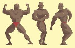 Bodybuilder αθλητικών τύπων διανυσματικός χαρακτήρων μυϊκός γενειοφόρος ατόμων πρότυπος θέτοντας bodybuilding αθλητισμός athlets  διανυσματική απεικόνιση