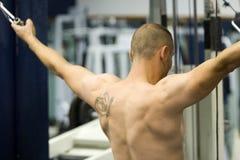 bodybuilder ασκώντας Στοκ Φωτογραφίες