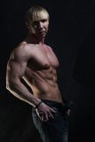 bodybuilder μυϊκός Στοκ εικόνες με δικαίωμα ελεύθερης χρήσης