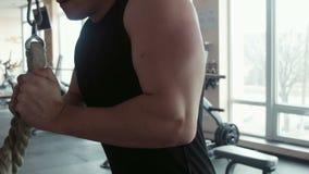 Bodybuilder που κάνει triceps workout φιλμ μικρού μήκους