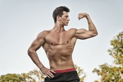Bodybuilder που παρουσιάζει μυς, δικέφαλοι μυ'ες και triceps Στοκ φωτογραφίες με δικαίωμα ελεύθερης χρήσης