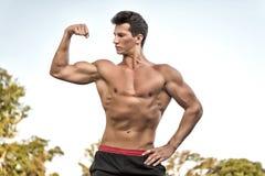 Bodybuilder που παρουσιάζει μυς, δικέφαλοι μυ'ες και triceps Στοκ Εικόνες